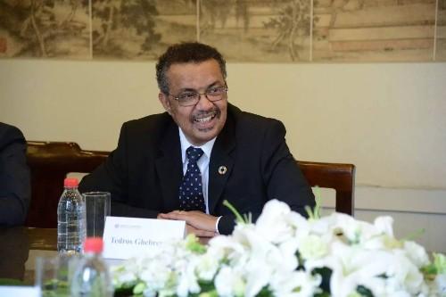 日本就支持非洲两国世贸总干事候选人方向展开协调